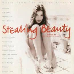 Обложка к диску с музыкой из фильма «Ускользающая красота»