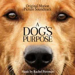 Обложка к диску с музыкой из фильма «Собачья жизнь»