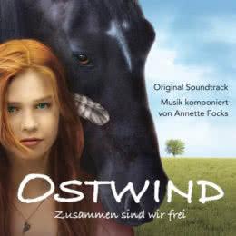 Обложка к диску с музыкой из фильма «Восточный ветер»