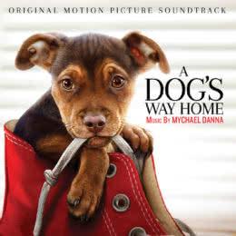Обложка к диску с музыкой из фильма «Путь домой»