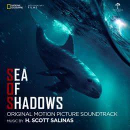 Обложка к диску с музыкой из фильма «Море теней»