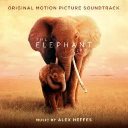 Обложка к диску с музыкой из фильма «Королева слонов»