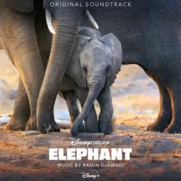 Обложка к диску с музыкой из фильма «Слон»
