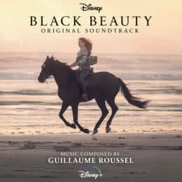 Обложка к диску с музыкой из фильма «Чёрная Красавица»