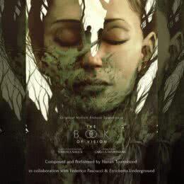 Обложка к диску с музыкой из фильма «Книга видения»